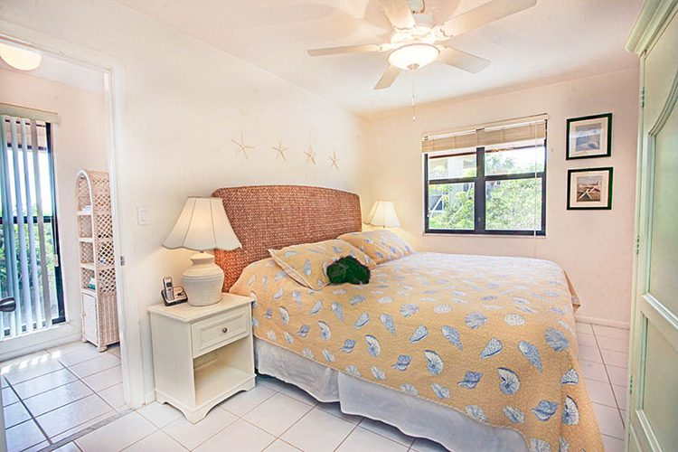 Room 6 - Guest Room